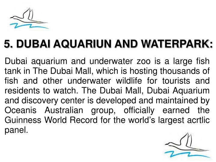 5. DUBAI AQUARIUN AND WATERPARK: