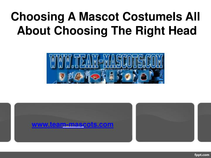 Choosing A Mascot CostumeIs All