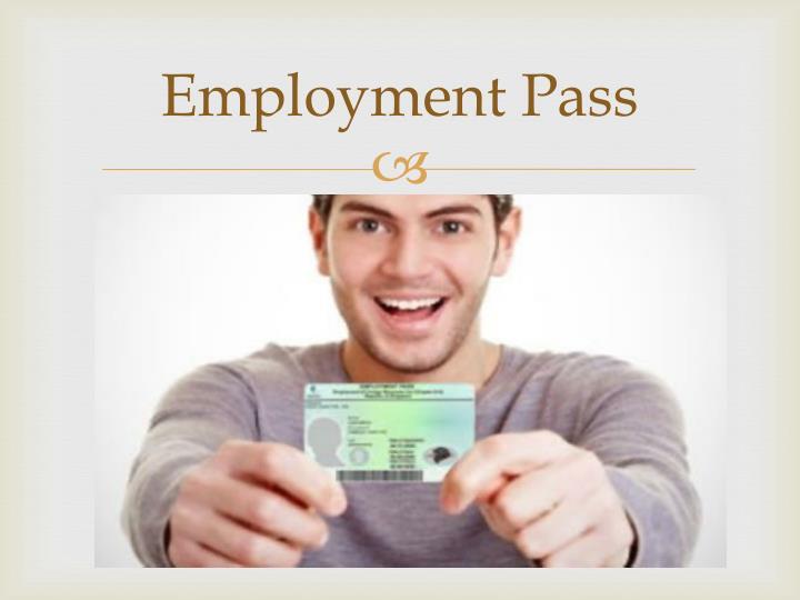 Employment pass