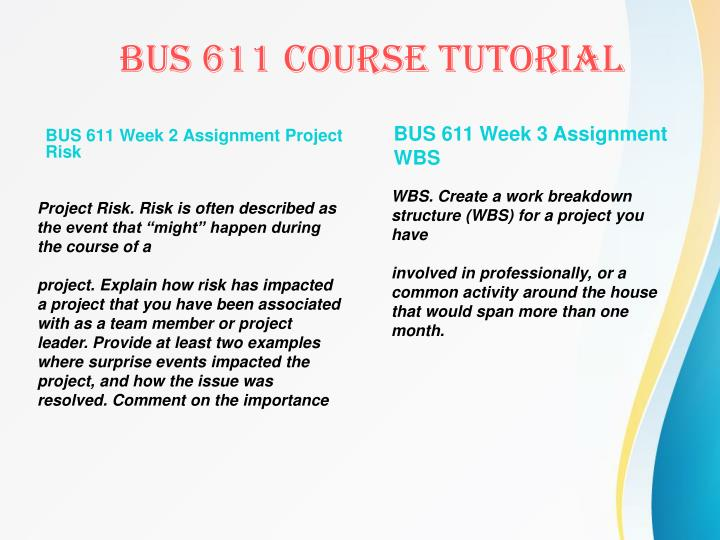 BUS 611 Week 2 Assignment Project Risk
