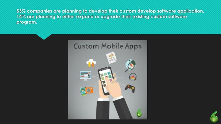 53% companies are planning to develop their custom develop software application.