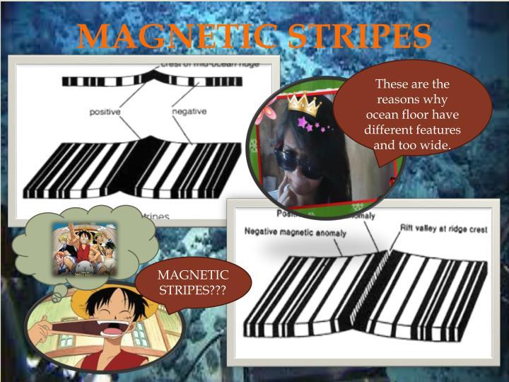 MAGNETIC STRIPES