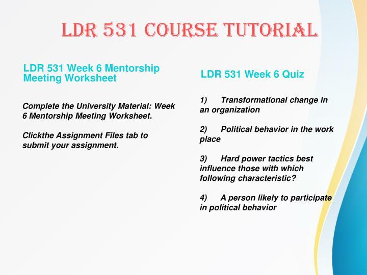 LDR 531 Week 6 Mentorship Meeting Worksheet