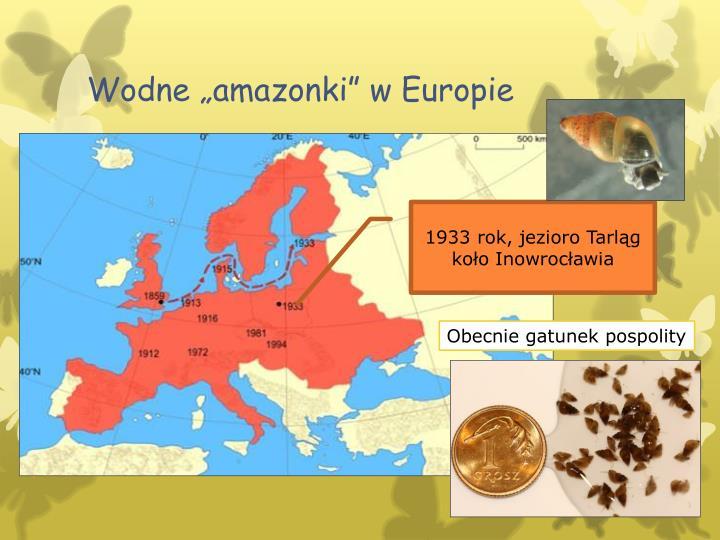 """Wodne """"amazonki"""" w Europie"""
