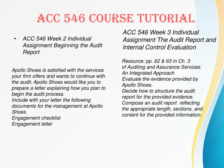 ACC 546 Week 2 Individual Assignment Beginning the Audit Report