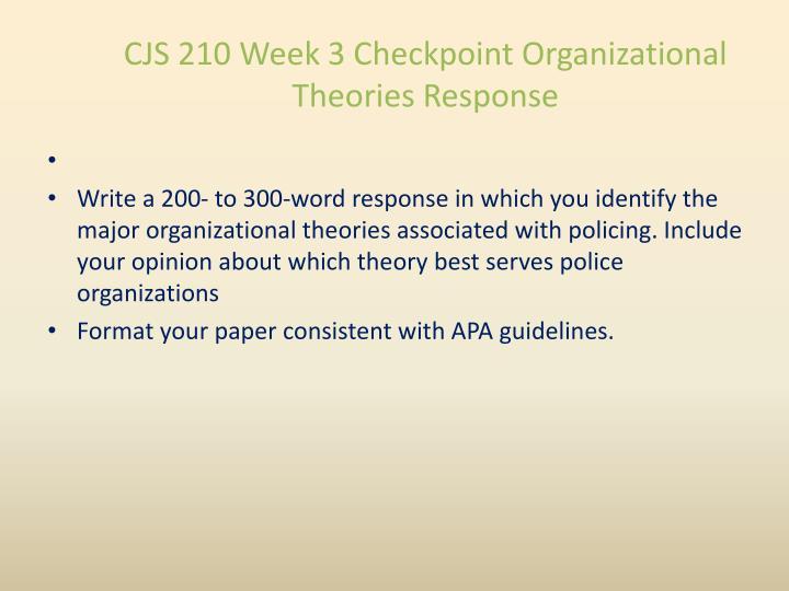 police organizational theories
