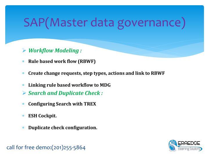 SAP(Master data governance)