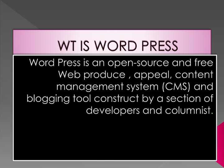 Wt is word press