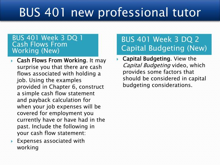 BUS 401 new professional