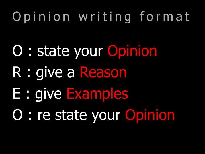 Opinion writing format
