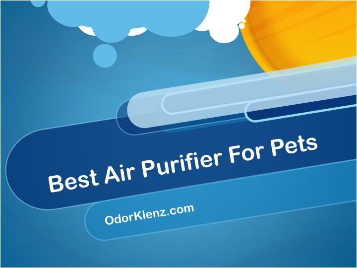 best air purifier for pets n.