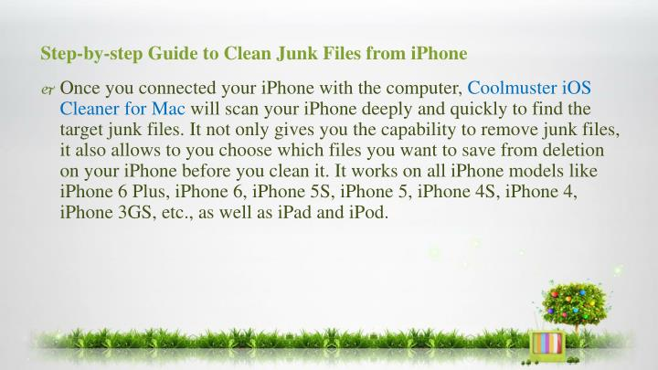Step-by-step Guide to Clean Junk Files from iPhone