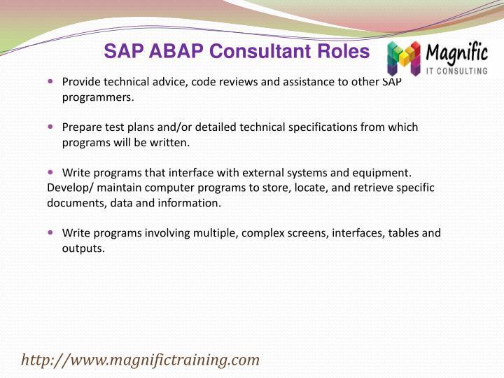 SAP ABAP Consultant Roles