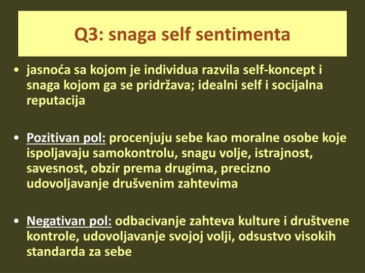 Q3: snaga self sentimenta