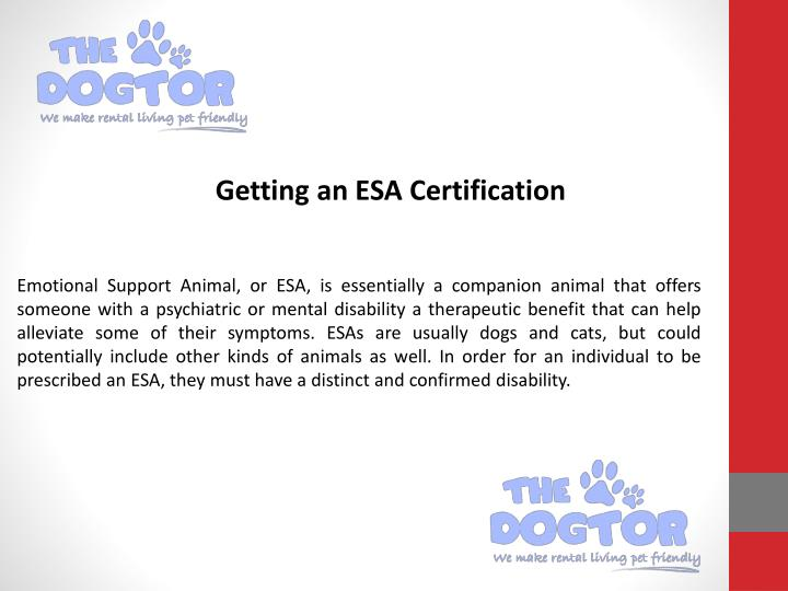 Ppt Certify Dog As Emotional Support Animal Powerpoint