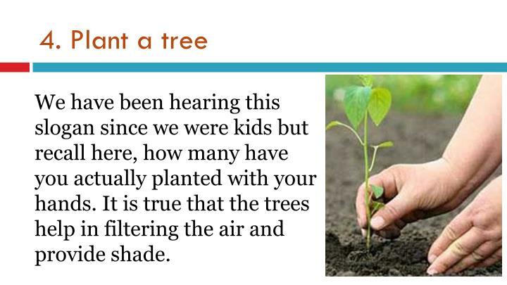 4. Plant a tree