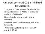 abc transporter abcg2 is inhibited by quercetin