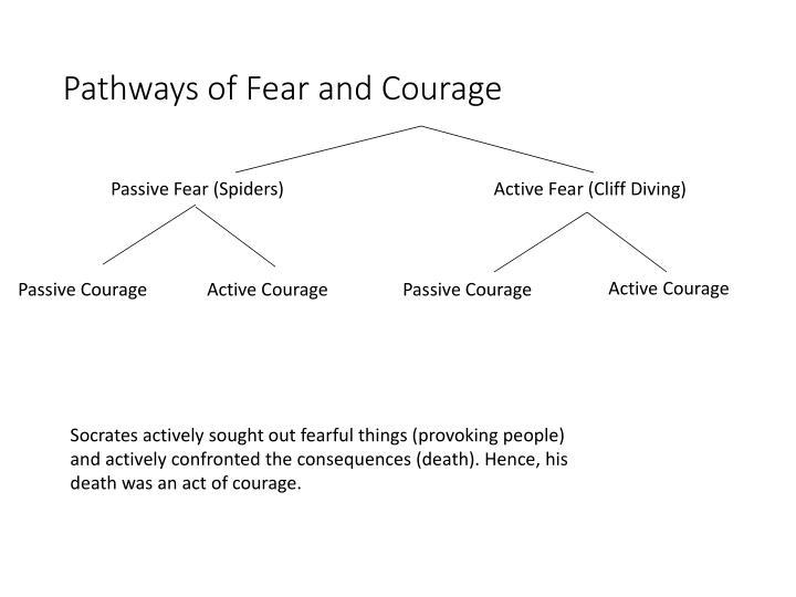 Passive Fear (Spiders)