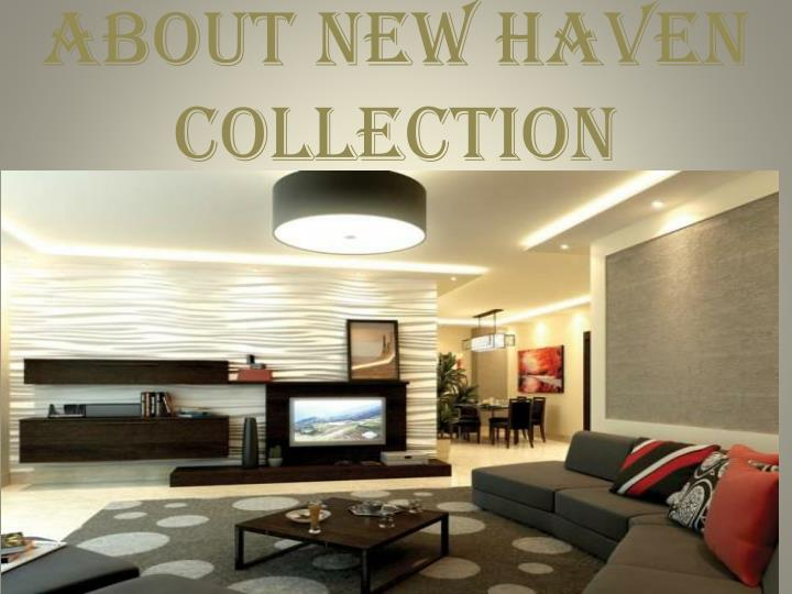 about new haven collection n.