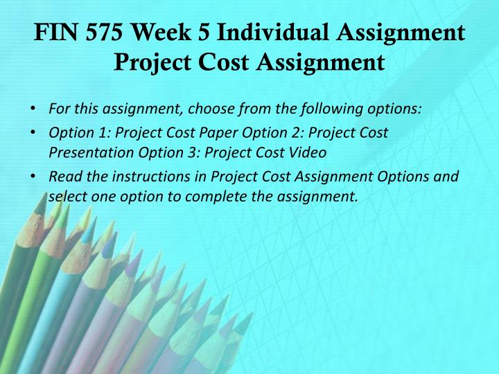 FIN 575 Week 5 Individual Assignment Project Cost Assignment