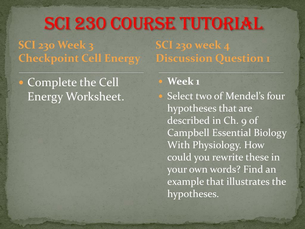 PPT - SCI 230 Academic Coach / uophelp PowerPoint Presentation - ID ...
