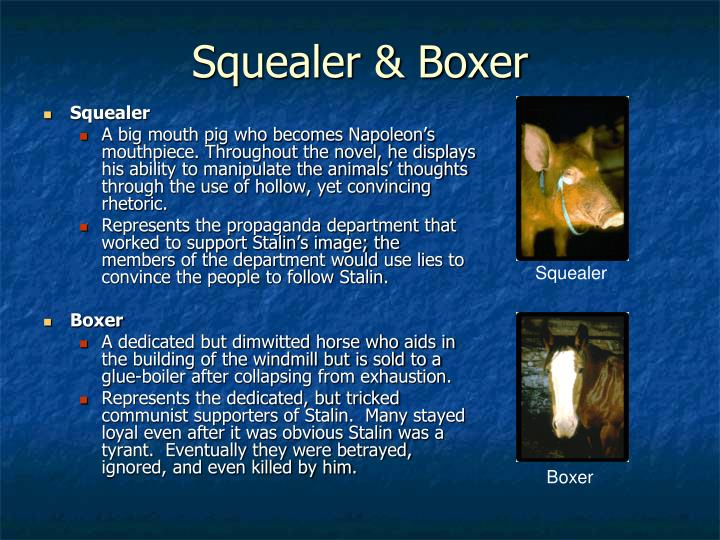 squealer and old major compare contrast A summary of chapter x in george orwell's animal farm squealer old major + main ideas the pigs' totalitarian rule creates a sense of dramatic contrast.