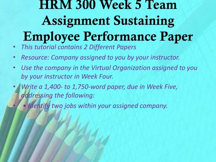 HRM 300 Week 5 Team Assignment Sustaining Employee Performance Paper