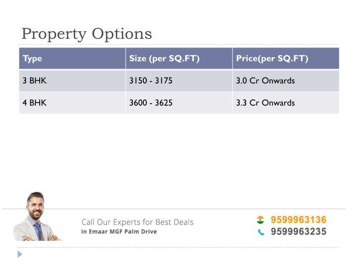 Property Options