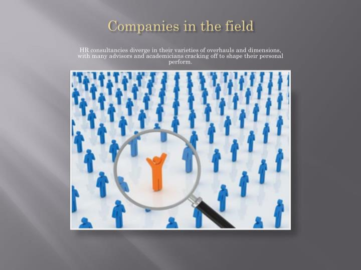 Companies in the field