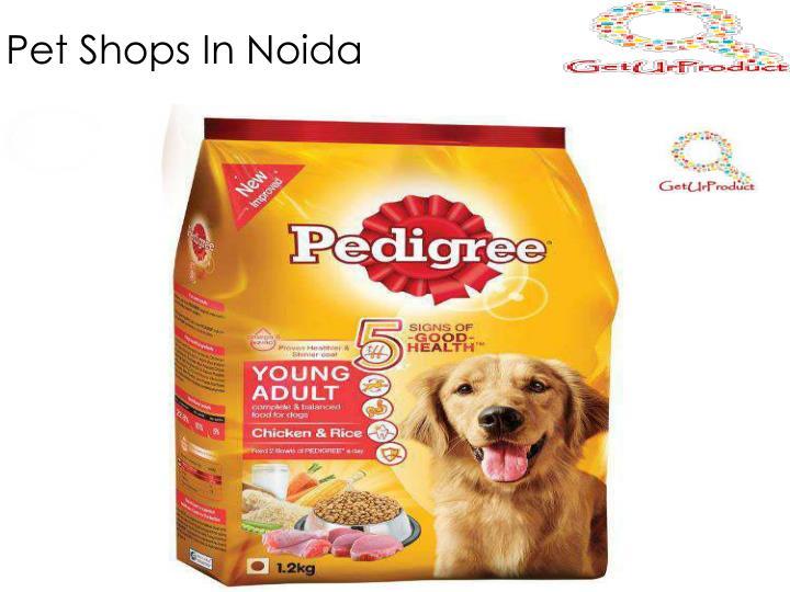 Pet Shops In Noida