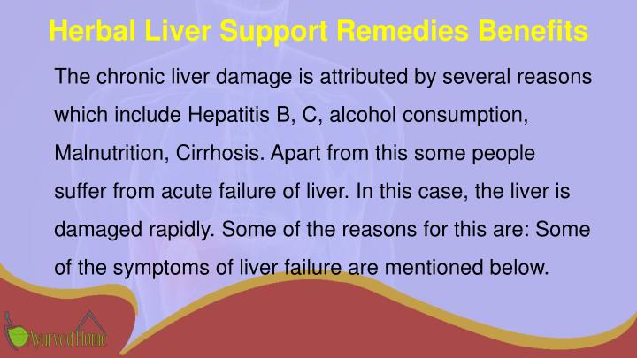 Herbal Liver Support Remedies Benefits
