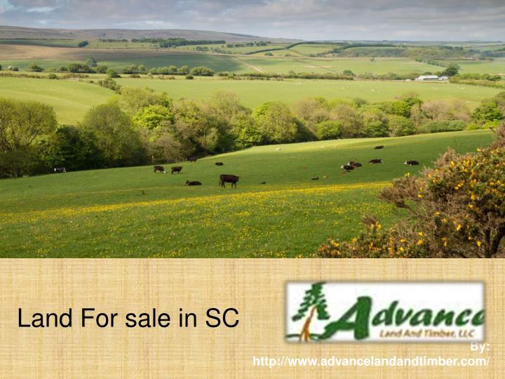 Land for sale in sc