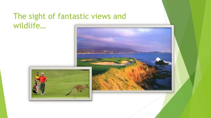 The sight of fantastic views and wildlife…