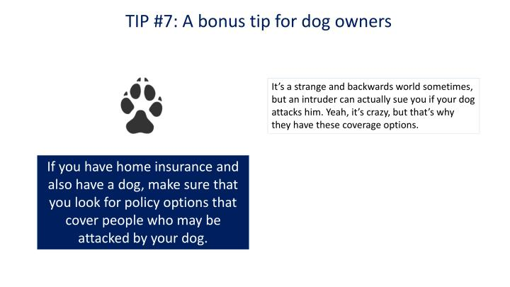 TIP #7: A bonus tip for dog owners