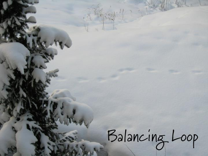 Balancing Loop