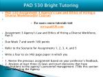 pad 530 bright tutoring2