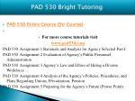 pad 530 bright tutoring5