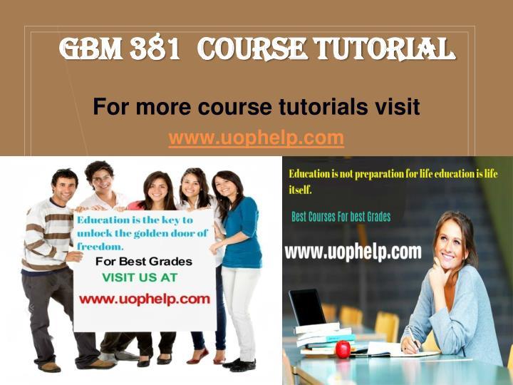 GBM 381  Course Tutorial