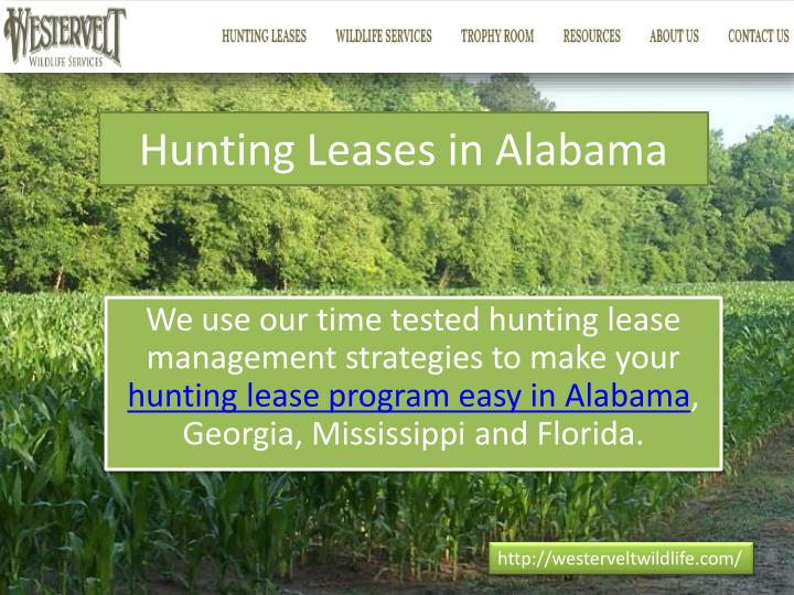 Hunting Leases in Alabama
