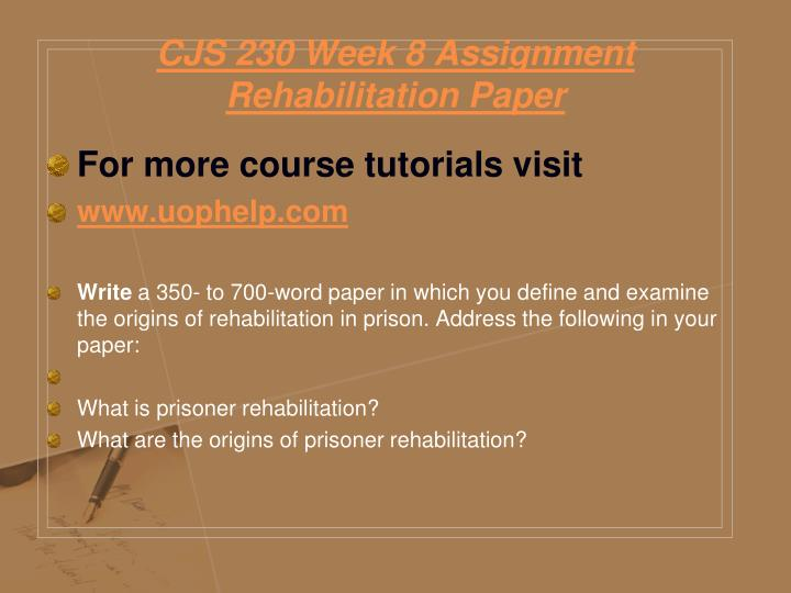 CJS 230 Week 8 Assignment Rehabilitation Paper