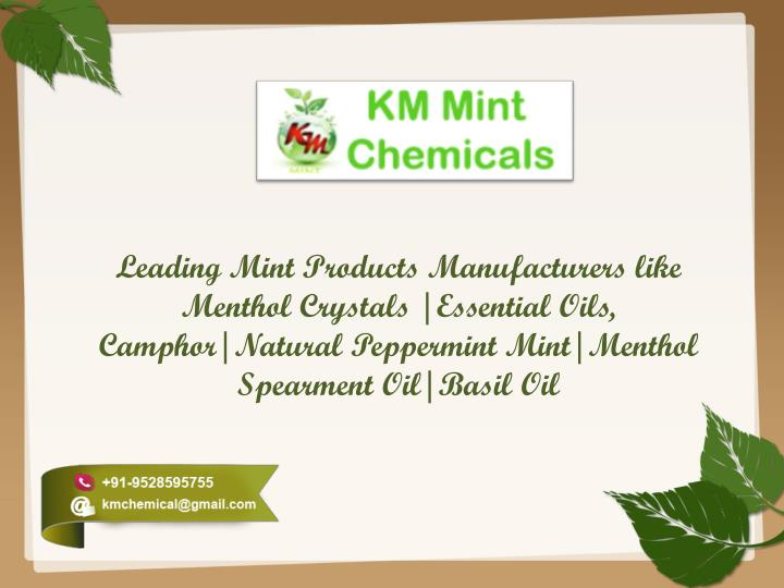 Leading Mint Products Manufacturers like Menthol Crystals  Essential Oils,