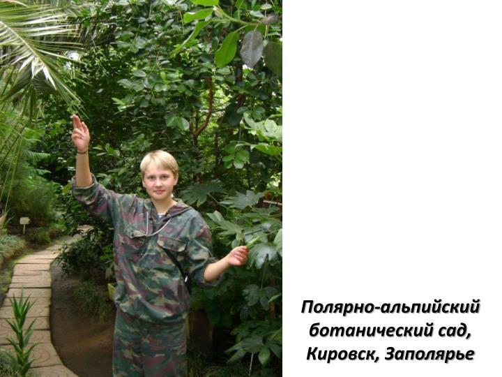 Полярно-альпийский ботанический сад, Кировск, Заполярье
