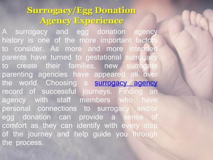 Surrogacy egg donation agency experience
