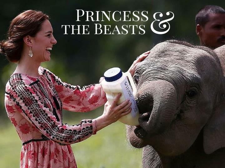 princess and the beasts n.