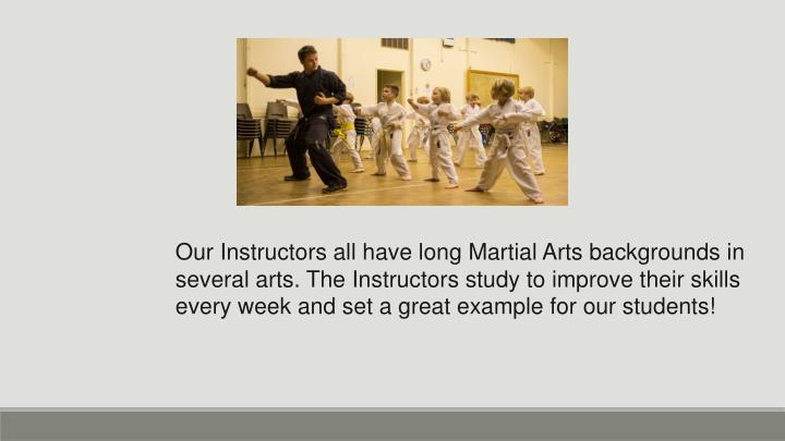 Our Instructors all have long Martial Arts backgrounds in several arts. The Instructors study to improve their skills every week and set a great example for our students!