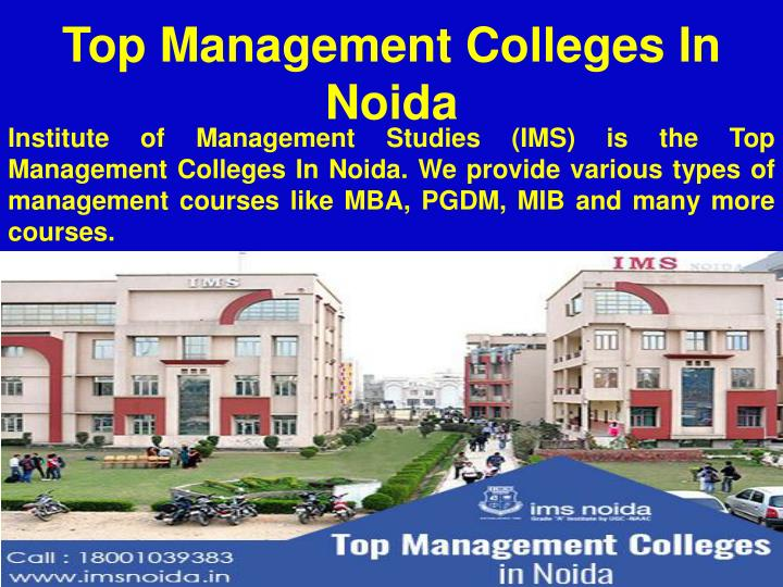 Top Management Colleges In Noida