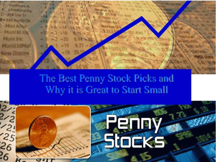 the best penny stock picks and why it is great to start small n.