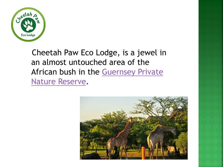 Cheetah Paw Eco Lodge, is a jewel in an almost untouched area of the African bush in the