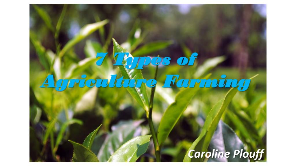 PPT - 7 Types of Agriculture Farming - Caroline Plouff PowerPoint