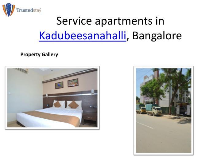 Service apartments in kadubeesanahalli bangalore